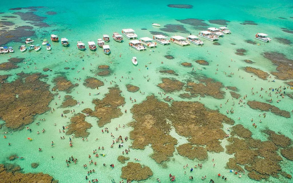 Barcos e catamarãs nas piscinas naturais de Maragogi - Experiências incríveis de Alagoas