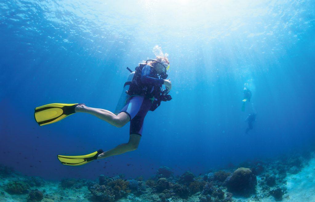 Onde praticar mergulho em Alagoas